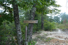 Rock Climbing Photo: New Signage to get you on the right trail