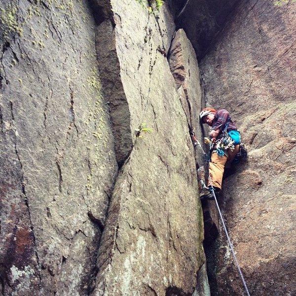 Rock Climbing Photo: Ben Greene placing gear on Birch Tree Corner. Phot...