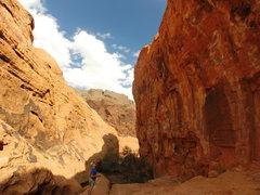 Rock Climbing Photo: Todd eyeing up Under the Boardwalk