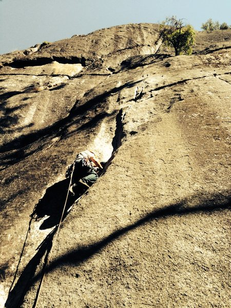 Rock Climbing Photo: Aiding the Church Bowl Tree (C1 or super polished ...