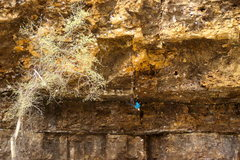 Rock Climbing Photo: It's a steep one...Bob Oman getting after it on th...
