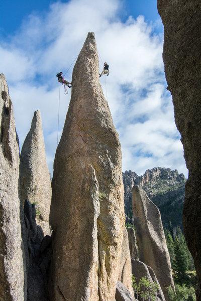 Rock Climbing Photo: The classic needles simul rap