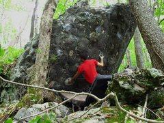 "Rock Climbing Photo: Parlier starting ""Struttin'"""