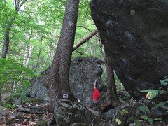 Rock Climbing Photo: Parlier halfway up the FA of Trillium Arete