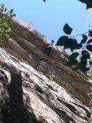 Rock Climbing Photo: Boris pulling the Lip on Falled On Account of Stra...