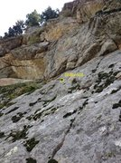 Rock Climbing Photo: Above Kate Moss on Black Widow Slab in Boulder Can...