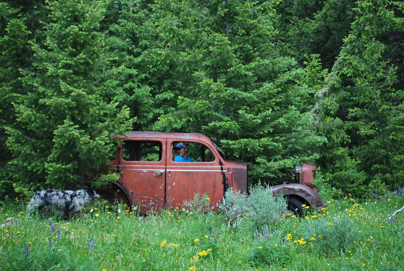 Here is the sweet old Dodge left in the meadow.  This is about 15-20 minutes into the hike.