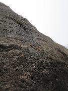 Rock Climbing Photo: The white monkey making bad decisions.