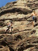 Rock Climbing Photo: Stevie J eyeing a placement