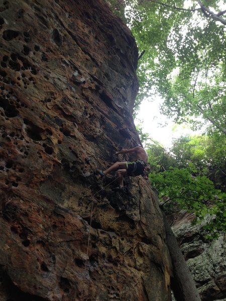 Rock Climbing Photo: Fuzzy Undercling