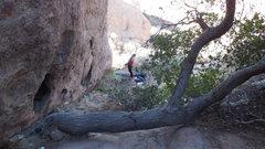 Rock Climbing Photo: The odd horizontal oak tree trunk at the base of &...