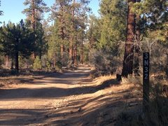 Rock Climbing Photo: The road to the northern Pinnacles (3N32), Holcomb...