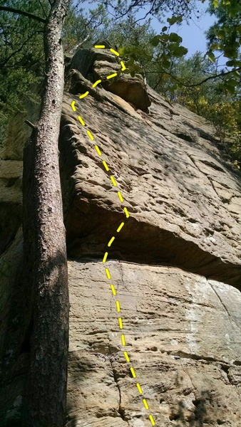 Kentucky Pinstripe 5.10a, full view