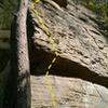 Kentucky Pinstripe 5.10a, full view