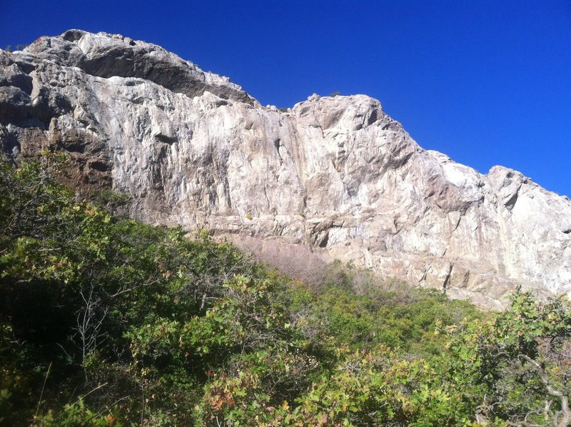 Rock Climbing Photo: Birch fork wall