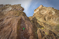 Rock Climbing Photo: The Phoenix (.10a).  Bolted anchors are just past ...