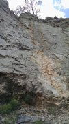 Rock Climbing Photo: Tidy Cat follows the left side of the white/orange...
