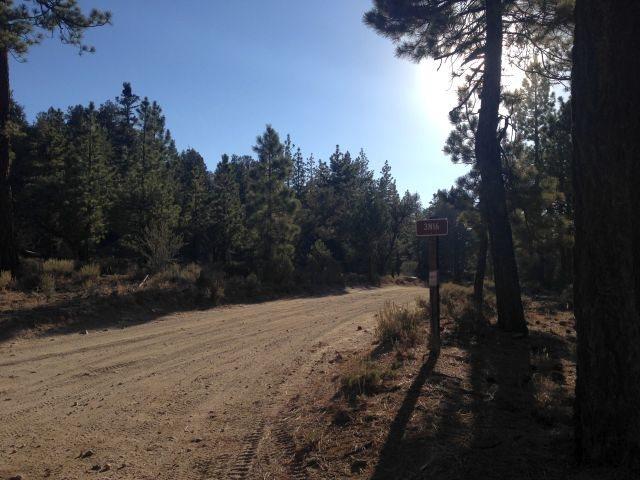 Forest Road 3N16, Big Bear North