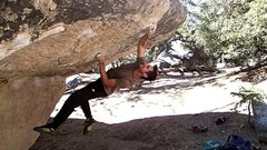 Rock Climbing Photo: Sticking the dyno with a right hand.