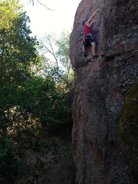 Rock Climbing Photo: Nick on Sound Chaser