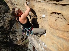 Rock Climbing Photo: climbing at the red river gorge