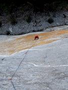Rock Climbing Photo: Stupid Pet Tricks
