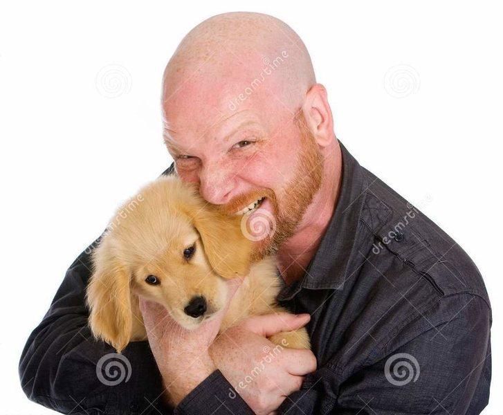biting dog