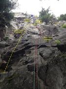 Rock Climbing Photo: Topp Topp Topo