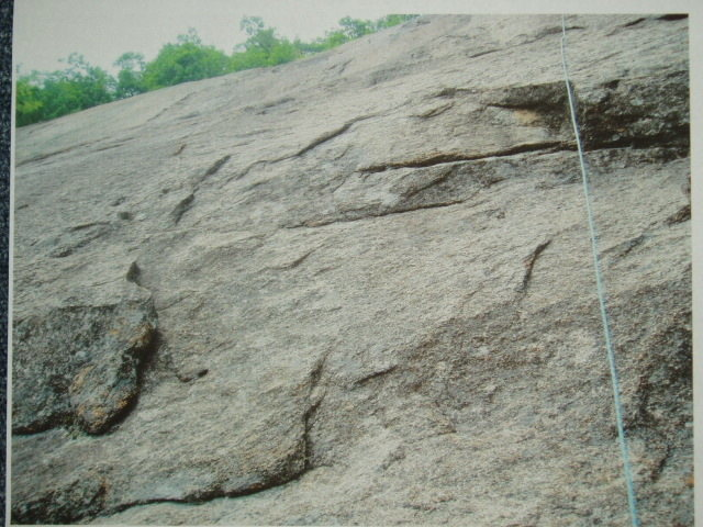 Rope on the overlap for First Wave, and Littoral Zone's flake to the left and below.