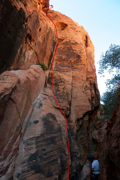 Rock Climbing Photo: A foreshortened view from the base.