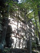 Rock Climbing Photo: Right side of the main wall, there is a hawks nest...