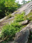 Rock Climbing Photo: The seldom-done P1 - Looking up from the path at t...