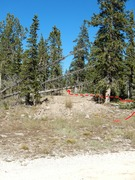 Rock Climbing Photo: Old Logging/Cell Tower Road with Berms.  Trail is ...