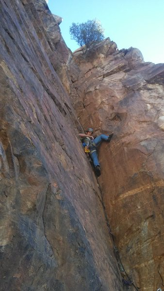 Rock Climbing Photo: Greg