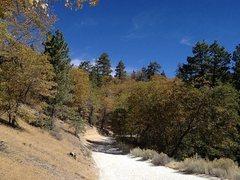 Rock Climbing Photo: Polique Canyon Road (2N09), Big Bear North