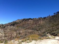 Rock Climbing Photo: Forest fire aftermath along 2N13, Big Bear North