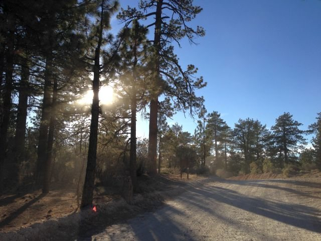 3N16 in Holcomb Valley, Big Bear North