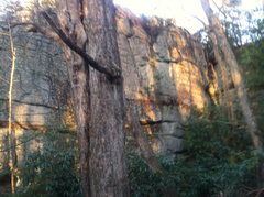 Rock Climbing Photo: The Slabby wall at The Lost World