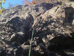 Rock Climbing Photo: Tree Keys