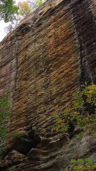 Rock Climbing Photo: Golden Boy- 13b.