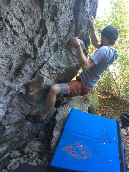 Spenser Bolte on Scott's Problem (V4)