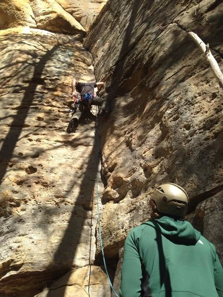Where I learned to climb - Red River Gorge