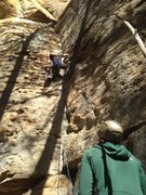 Rock Climbing Photo: Where I learned to climb - Red River Gorge