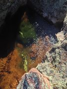 Rock Climbing Photo: This hueco has its own little aquatic ecosystem. T...
