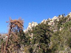 Rock Climbing Photo: Hanna Rocks from 2N13, Big Bear North