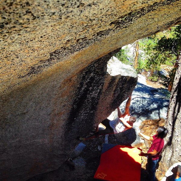 Rock Climbing Photo: Taylor pinching hard!