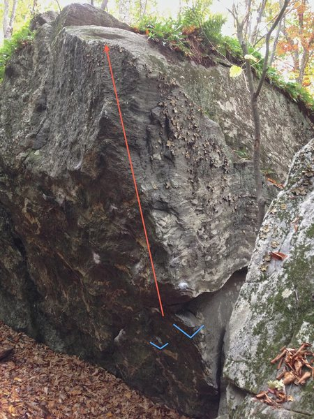 This photos shows the starting holds (marked in blue) and general line of travel (marked in red) of 'Bobby's Arete'.
