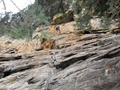 Rock Climbing Photo: Paul rappelling off Blue Valentine