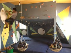 Rock Climbing Photo: An I.O. staff member and their newly painted wall....