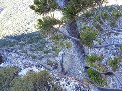 Rock Climbing Photo: 5.9 finger crack dihedral